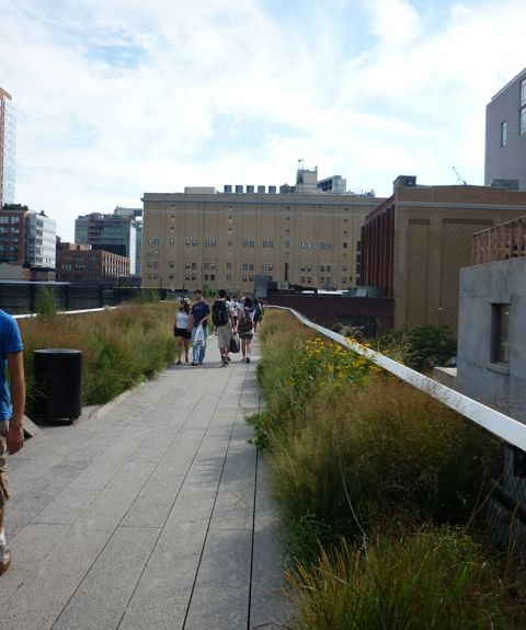 The Chelsea Grasslands near West 19th & 10th Streets.