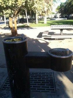 Leimert park water fountain