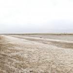 Arid Lands Assembled_Panorama_Alkali_Lake_ver3_crop1_opt2_1200px_560px_opt