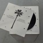 Palm Capsule