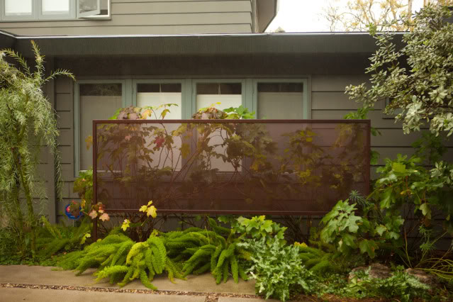 I've walked past this house in Brentwood many times and have always admired this 'privacy screen'. See the rest of this landscaped yard, and many others, on the APLD Garden Tour.
