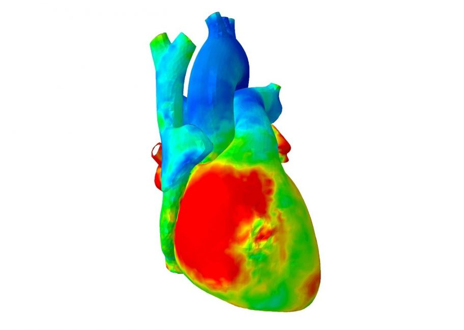 Love inspires engineer to 3D model the human heart
