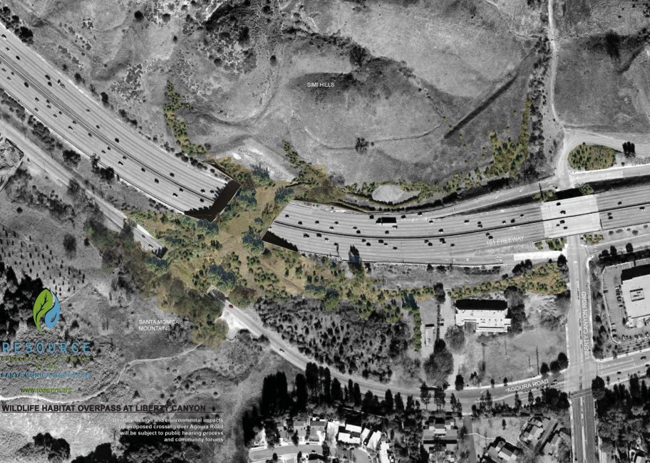 Here's what you need to know about the Liberty Canyon Wildlife Crossing