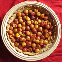 Rainier cherry pie full sq