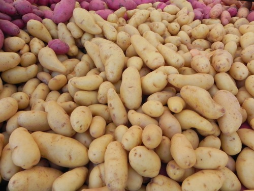 Weiser Family Farms' La Ratte Potatoes