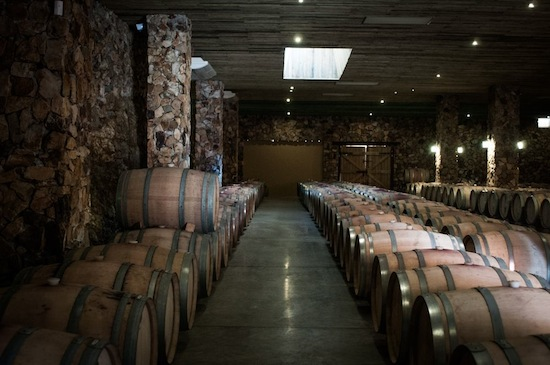 Oak wine barrels at Las Nubes.