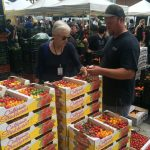 Mark Carpenter showing Laura Avery his heirloom tomatoes