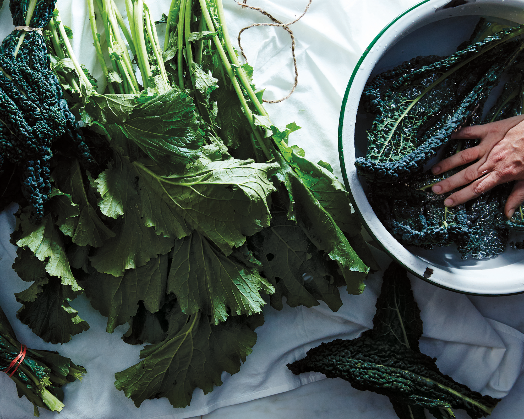 2000-food52-new-way-to-dinner_garlicky-greens