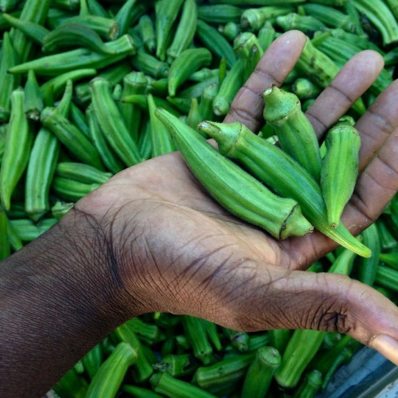 Chef BJ Dennis, The Gullah-Geechie Chef, with his favorite food: okra. Abbie Fentress Swanson/KCRW