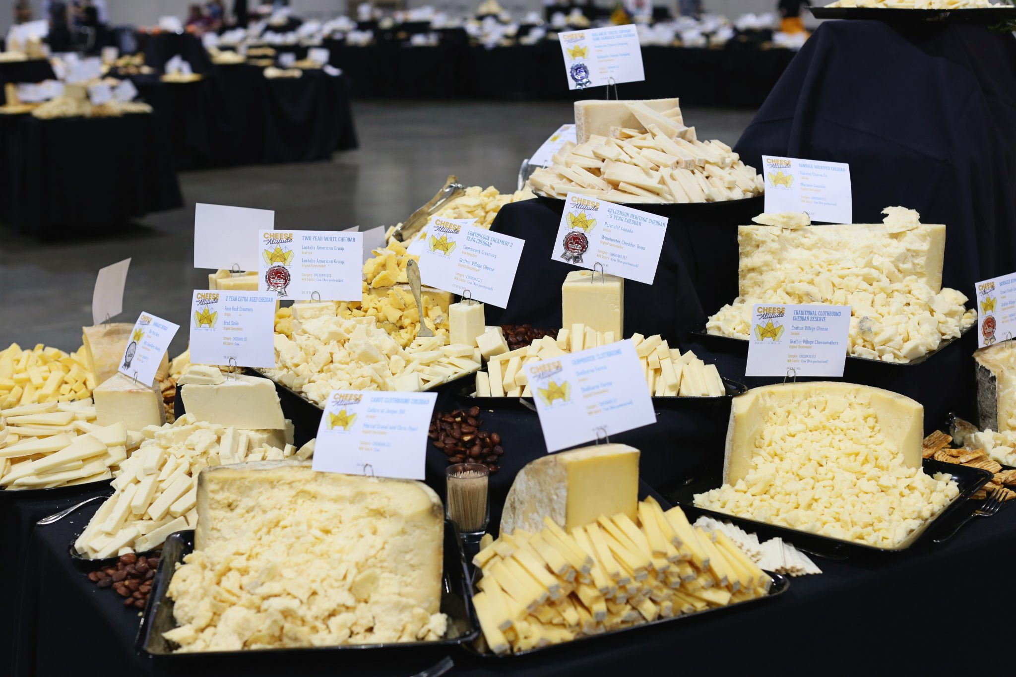 The vast array of competition cheeses. Photo by Marisa Chioini