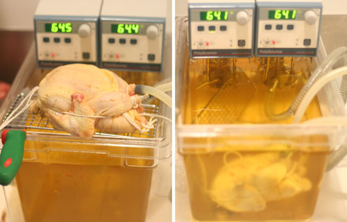 Thanksgiving hacks: Bionic turkey