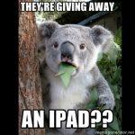 KoalaCantBelieveIt_iPad