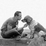 ArtShay_Brando1950