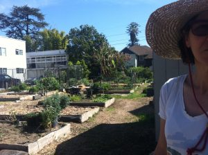 Urban farmer Julie Burleigh