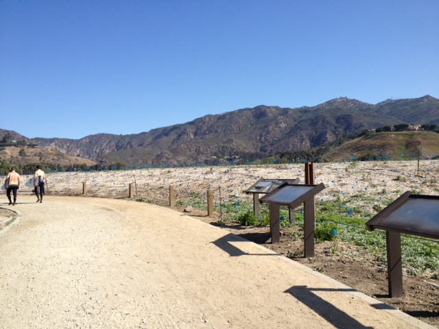 A new path winds through the restored Malibu Lagoon.