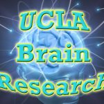 uclabrains