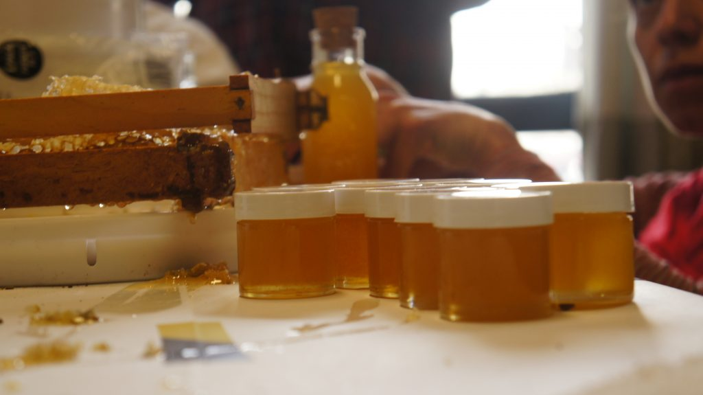 HoneyLove evangelizes on behalf of urban beekeeping by holding public events and tutorials. In HoneyLove's Culver City offices, people can learn how to taken honey straight from the honeycomb and put it in jars. (Photo by Saul Gonzalez)