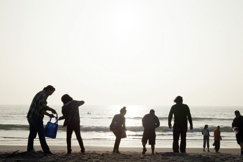 A group on a beach clean-up.