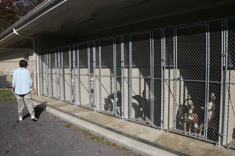 Orange County Animal Shelter
