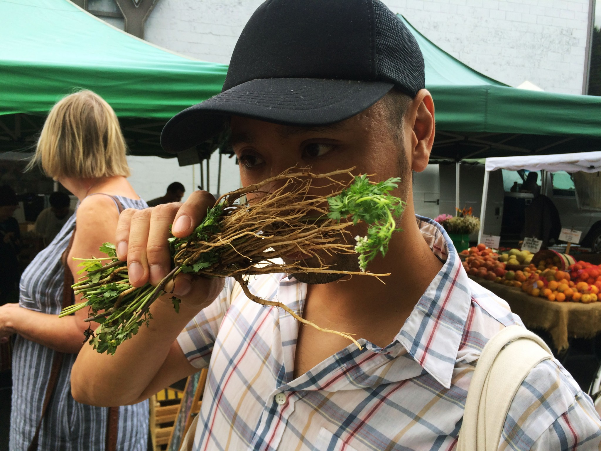 Cilantro roots: Can you dig it?   KCRW