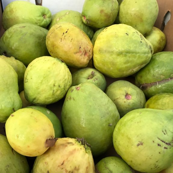 Guavas from Garcia's Organic Farm. Joseph Stone/KCRW