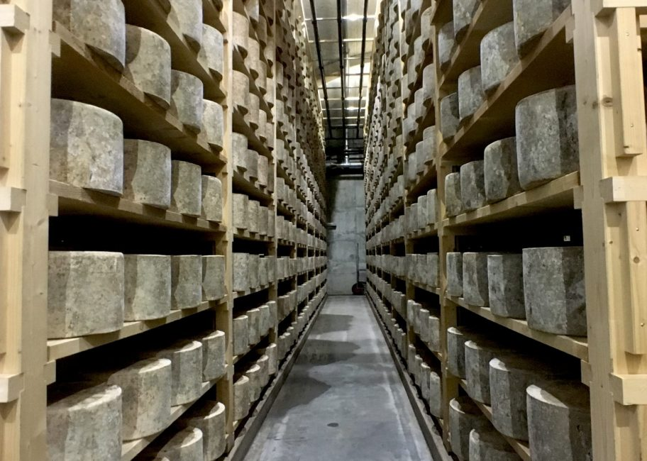 The history of America's favorite cheese
