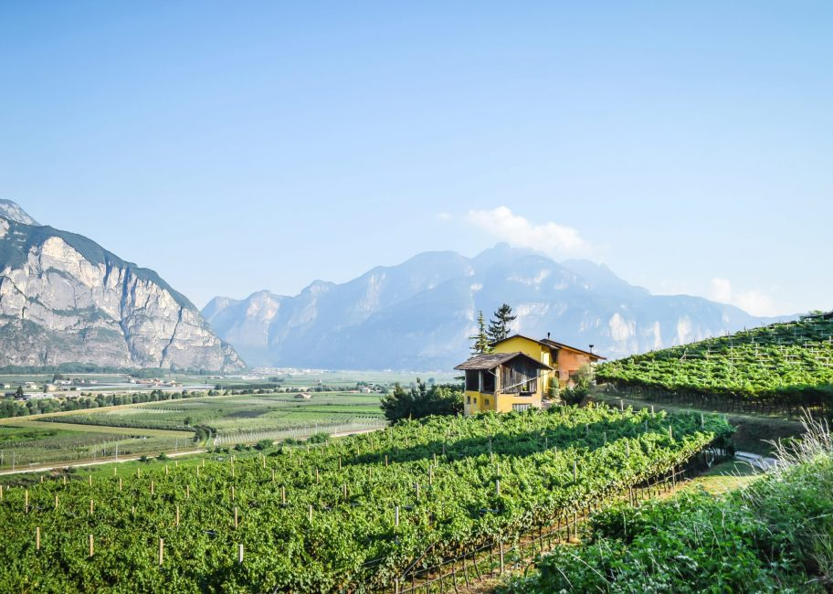 Spreading the gospel of Italian sparkling wine